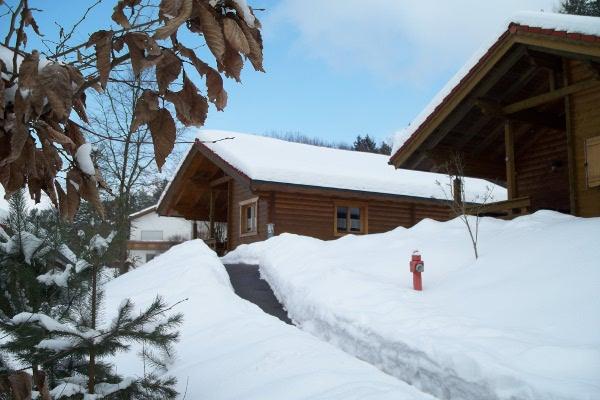 Urlaub mit Familie und Hund im Ferienhaus Blockhaus Hedwig